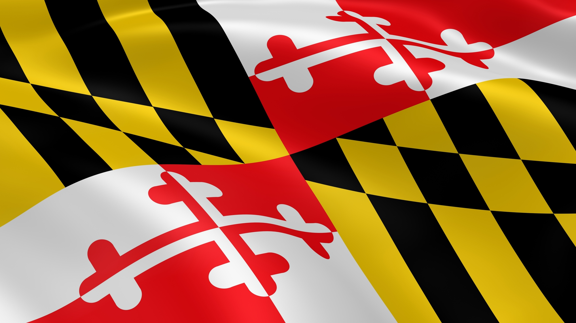 CHS Students Honored for Maryland History Day Project